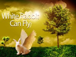 White Rabbit Can fly by Oceandeep76