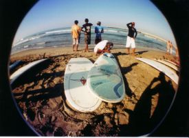 Surfvivor 2008 1 by digimurder