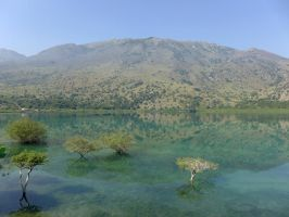 Lake Kournas with Submerged Trees, Crete by bobswin