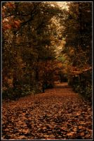 Autumn Leaves by P-er