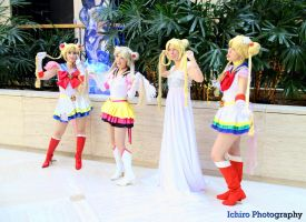 Silly Usagi/ Sailor Moon by SailorSamara