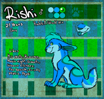 Rishi Reference Sheet by LeoOfTheDeaD