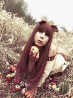 HORO HOLO - SPICE AND WOLF - COSPLAY by K-I-M-I