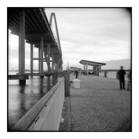 2015-013 Fishing pier under the bridge by pearwood