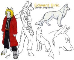 Edward Elric dog sheet by BlackWolf5