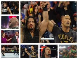 Royal Rumble 2015 Photo Collage #2 by DigitBrony