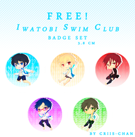 Iwatobi swim Club BadgeSET by criis-chan