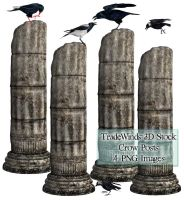 TW3D Crows and ruins by TW3DSTOCK