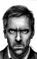 Hugh Laurie 2 by k-dezign