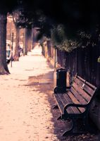 Wintery Bench by eyebrows360
