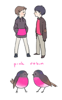 Pink Robins by b-snippet