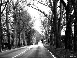 The Road by Tabetha-Sioux