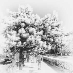 Street in infrared by mugurelm