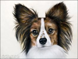 Papillon by ArtbyKerli