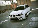 Seat Ibiza 6L_Stance_3 by LucianP