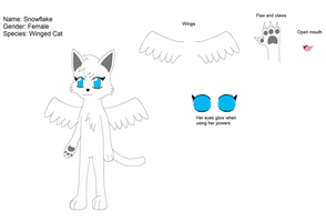 Snowflake the cat ref by Kitsune257