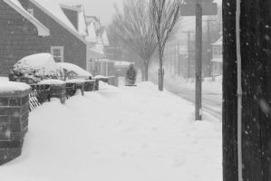 2015 January Blizzard, Snow Blower Time 2 by Miss-Tbones