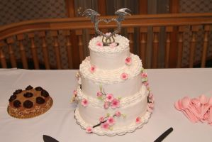 My First Wedding Cake by Nornin
