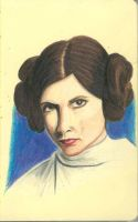 Leia - Pencils by Flynn-the-cat