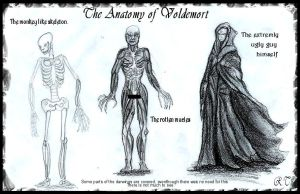The True Anatomy of Voldemort by Ruth-Tay
