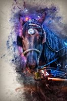 Horse 1 by docx