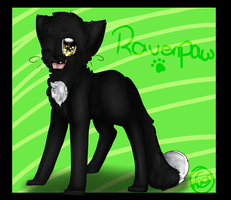 Ravenpaw. by CrazyKaorix3