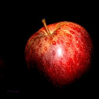 A red apple by Yoonett