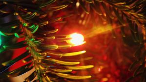 Christmas Light by Zulusus