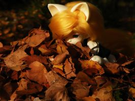 Pile of leaves 1 by stievel