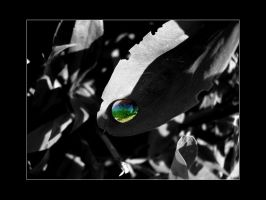 +  spectrum in a tear drop + by Roxsquoggle
