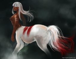Centaur Speedpaint by yapi