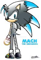 My new character - Mach by sonicwindartist