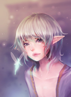 elf + fairy by milkgrrl