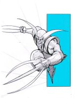 .:Wolverine - Fastball Special:. by teflonmonkey