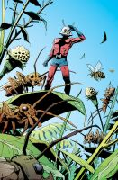 Ant-Man: After the rain... by deankotz