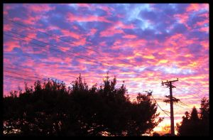 Powerlines at Dusk by VelocityRiot