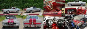 1967 Ford Mustang GT Fastback by samiximas