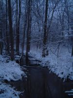 Creek In The Winter by Gothgirl145