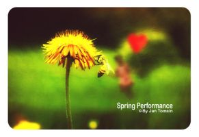 Spring Performance by Tomsin