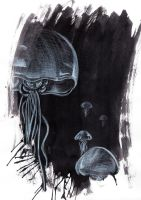 A Jellyfish by CinnamonSoldier