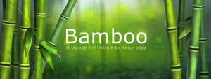 Bamboo by Milaky