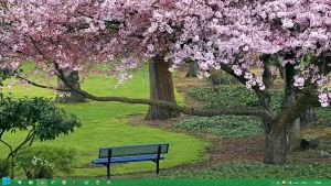 Spring Theme 2013 Windows 7 & 8 by Adyss88 by Andrei-Azanfirei