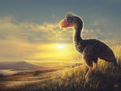 Paraphysornis Contemplating the Dawn by WillFx
