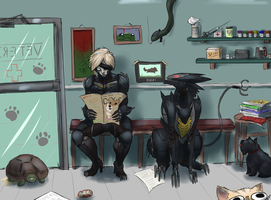 Raiden goes to the vet by RailgunTogepi