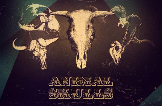 WG Animal Skull Vectors by wegraphics