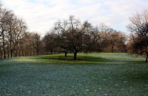 Green Park is Cold by Valadj