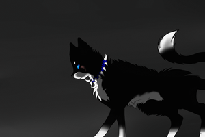 Nightclaw dissapering animation by Nightclaw5938