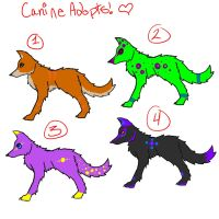 Canine Point Adoptables by Nightshadow-Horus
