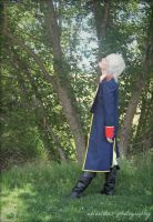 APH Prussia: Among the Green by Leviathanlover