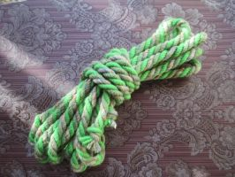 Zombie's Shibari Rope by user-name-not-found